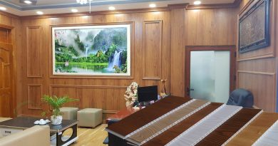 Trang Trí Gỗ Nhựa ốp tường phòng khách phòng ngủ Giá rẻ đẹp nhất 2021 Sang Trọng Độc Đáo